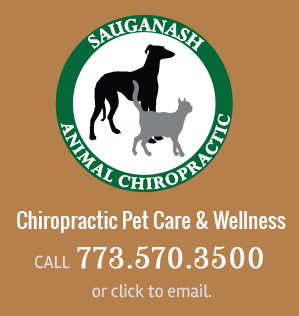 Call Sauganash Animal Chiropractic